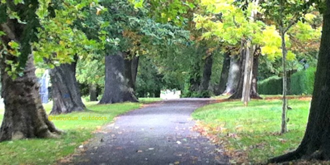 Early Autumn colours walking London Park @fabulous_outdoors