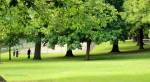 Park_Hill_Croydon_Surrey_©fabulousOutdoors_IMG_0490