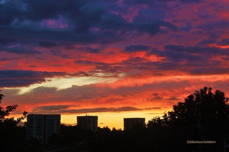 Sunset_Croydon (2)