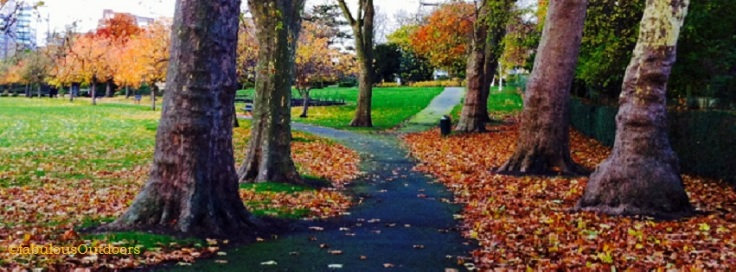 Running_in_the_Park_Hill_Croydon_Surrey_@fabulous_Outdoor_Photography - Copy