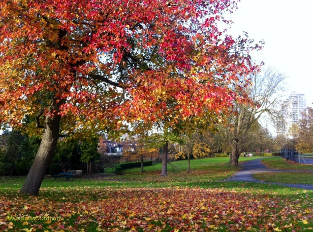 Running_in_the_Park_Hill_Croydon_Surrey_@fabulous_Outdoors - Copy
