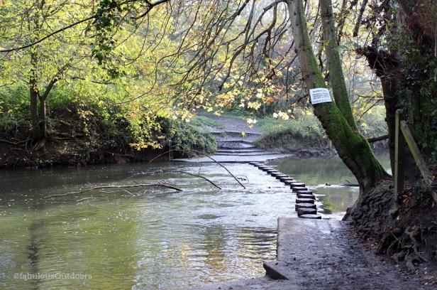 Stepping_Stones_Walk_Box_Hill_Surrey_@fabulous_outdoorsIMG_1176