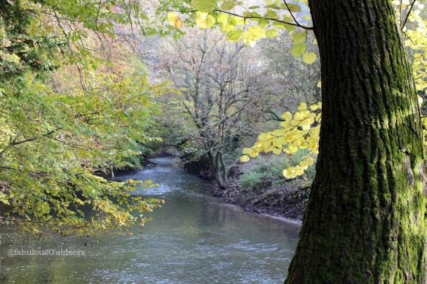 The_River_Mole_Molesey_Valley_Surrey_@fabulousOutdoors_Photography_IMG_1178