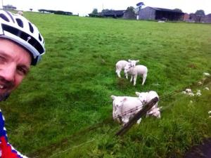 Cycling_in_Surrey_British_Countryside_Lambs_Country_Farm_Animals_Nature@FabrizioMalisanPhotography