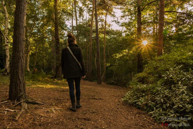 Walking towards the sunset - Coombe Wood Park