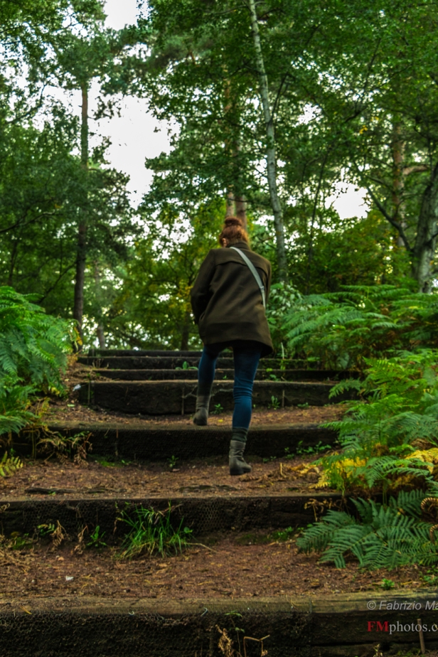 Climbing the steep steps - Coombe Wood Park