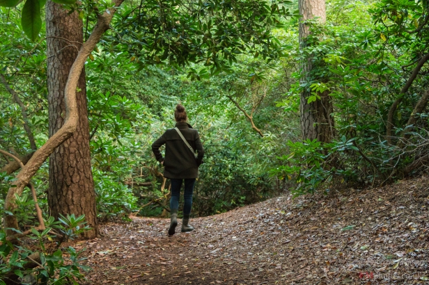 Exploring the woodlands - Coombe Wook park