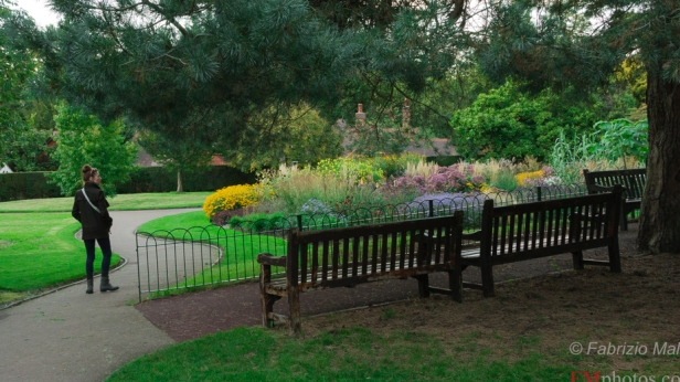 Walking paths and areas to sit on a bench - Coombe Wood Gardens