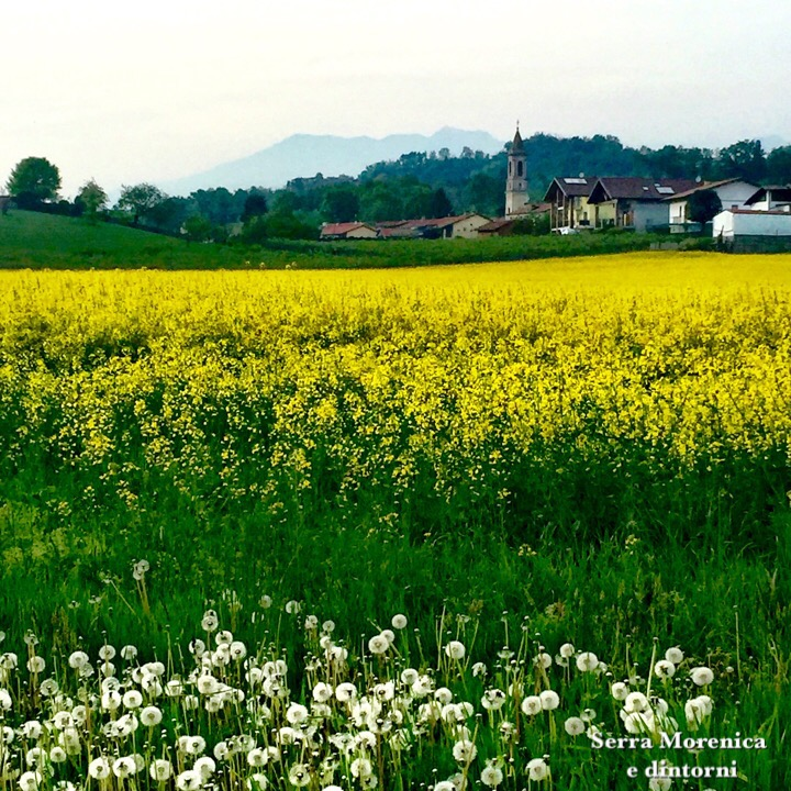 Colourful fields in Piemonte Italy - Fabulous Outdoors