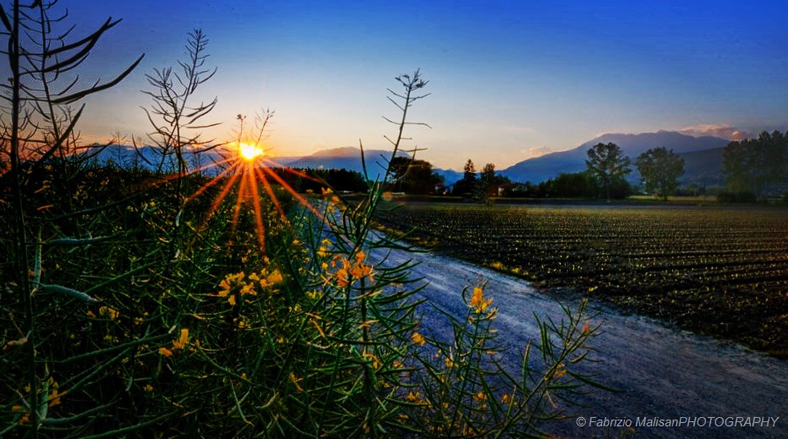 Evening comes in the fields of Piemonte Italy
