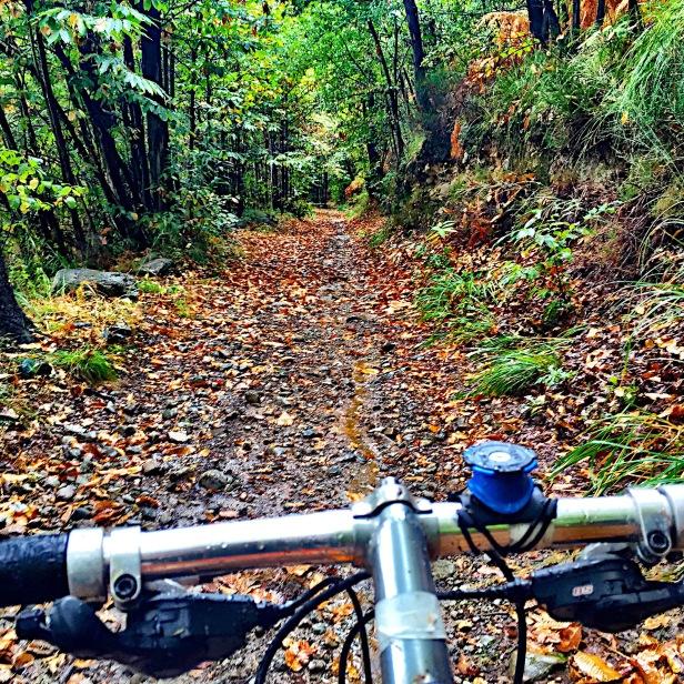 Serra Morenica autumnal Mtb ride