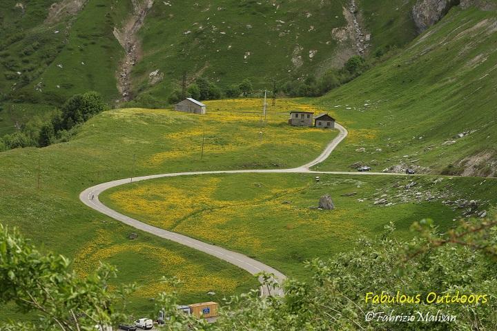 Roselend Winding Road Amongst Flowers Fabulous Outdoors 253A7365